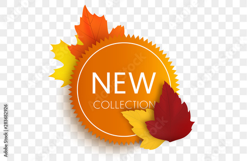 Valokuva  New collection tag. Autumn sale banner isolated.