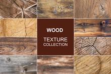 Old Wood Texture Of Tree Stump...