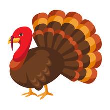 Happy Thanksgiving Illustration Of Turkey.
