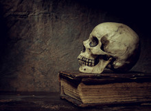 The Skull Lies On An Old Book....