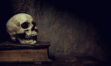 The Skull Lies On An Old Book. Photo Taken In Vintage Style.