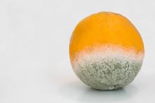Orange Citrus Fruit, Partially...