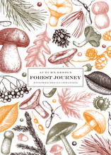 Vintage Autumn Card Design. Hand Drawn Leaves, Conifers, Berries, Mushrooms Illustrations. Vector Mushrooms Template. Trendy Botanical Background.