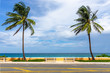 canvas print picture - South Florida coastal palm trees and beach