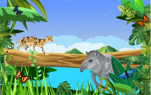 A high quality background of landscape with jungle plants and animals