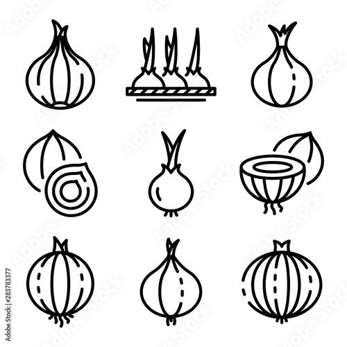 Fototapeta Onion icons set. Outline set of onion vector icons for web design isolated on white background obraz