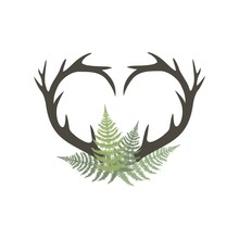 Heart Shaped Deer Head With Horns
