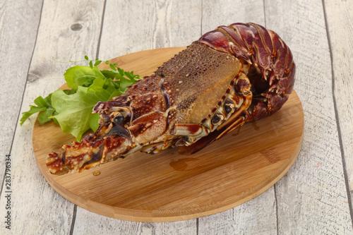 Obraz na plátně  Raw Langust or Tiny Lobster