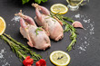 canvas print picture - Fresh raw meat quails with herbs and greens rosemary, basil ready for cooking on close-up. Uncooked quail