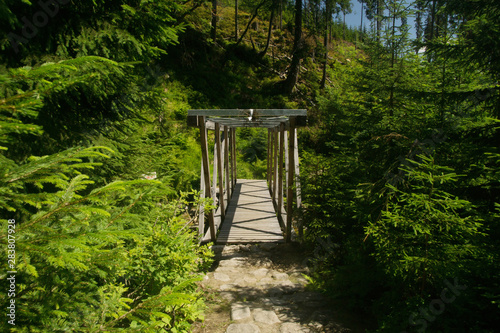 Fotografie, Obraz  mountain trail with a wooden foot-bridge over the mountain stream in the Krkonos