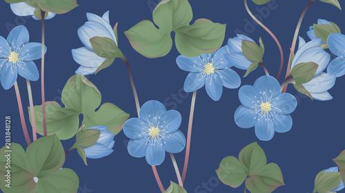 Botanical seamless pattern, blue Hepatica Nobilis flowers with leaves on dark blue, pastel vintage theme