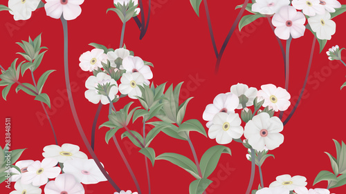 Botanical seamless pattern, Woolly rock jasmine flowers with leaves on red, pastel vintage theme