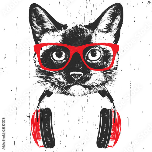 Fotografia Portrait of  Siamese Cat with glasses and headphones