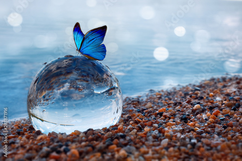 Obraz Butterfly on a glass ball on the beach refecting the lake and sky - fototapety do salonu