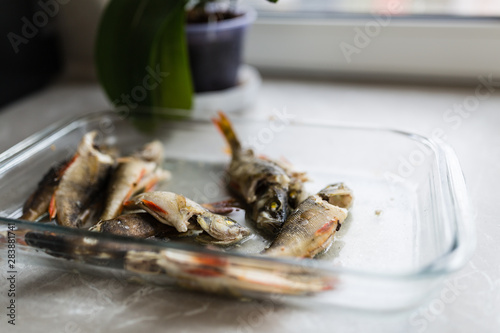 Poster Coquillage Backed fishes lying in glass plate on the kitchen. Healthy food concept