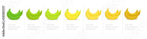 Fotografia, Obraz  Banana ripeness stages infographics chart