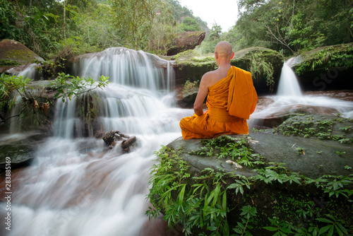 Acrylic Prints Forest river Buddha monk practice meditation at beautiful waterfall
