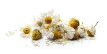 Chamomile, Dry, Petals, Tea, Organic, Alternative, Flower, Crushed, Infusion, Bud, Drink, Herb, Medical, Herbaceous, Aromatic, Aroma, Background, Beautiful, Beauty, Blossom, Bouquet, Closeup, Daisy, F
