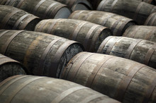 Oak Barrels At A Scotch Whisky Distillery