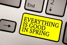 Word Writing Text Everything Is Good In Spring. Business Concept For Happiness For The Season Enjoy Nature Grey Silvery Keyboard With Bright Yellow Color Button Black Color Texts