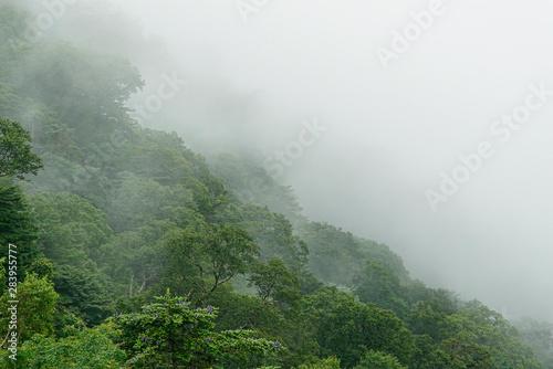 Foto auf AluDibond Khaki Mount Tsurugi in Tokushima, Japan