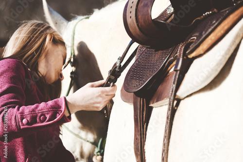 Obraz na plátně Western horseback riding concept shows preparation of woman putting saddle on horse to ride close up
