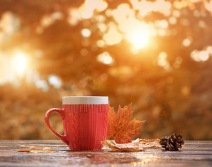 Red mug on rustic wood background. fall season concept. Cup of tea with autumn leaves. beautiful autumn composition. Autumn mood background. soft selective focus