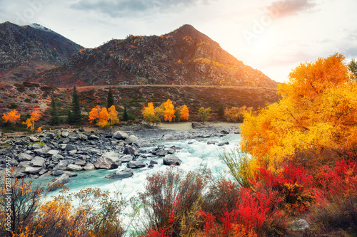 Photo Katun river with yellow autumn trees in Altai mountains at sunset
