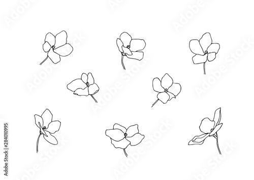 Photo  Set of hand drawn outline anemone flowers