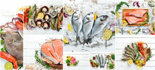Banner Collage. Fish And Seafood On White Wooden Background.