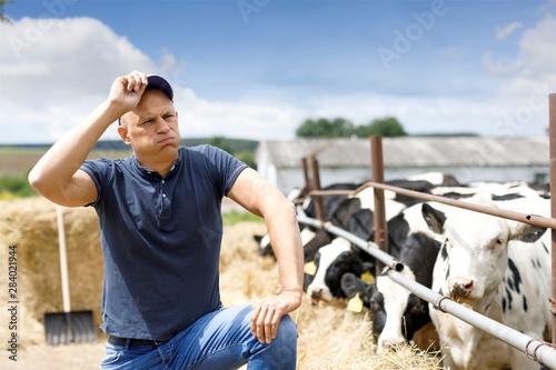 Pinturas sobre lienzo  farmer at farm with dairy cow