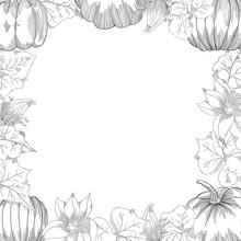 Pumpkin Frame Vector Drawing S...