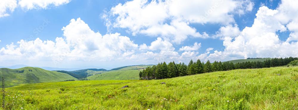 Fototapety, obrazy: ビーナスライン 霧ヶ峰高原