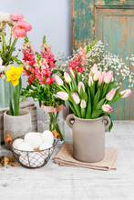 Many Kinds Of Spring Flowers. Home Decoration.