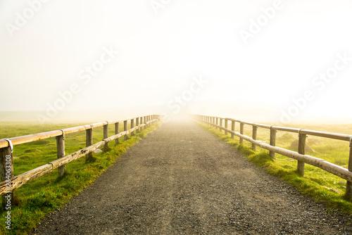 Fotografía 希望への道