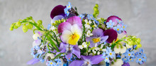 Pansy, Forget-me-not, Violet A...