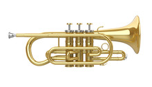 Cornet Brass Instrument Isolated
