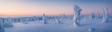 Very Wide Panorama Of Snow Pac...