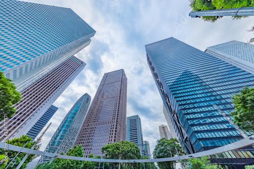 Photo  曇り空の新宿高層ビル群と新緑の木
