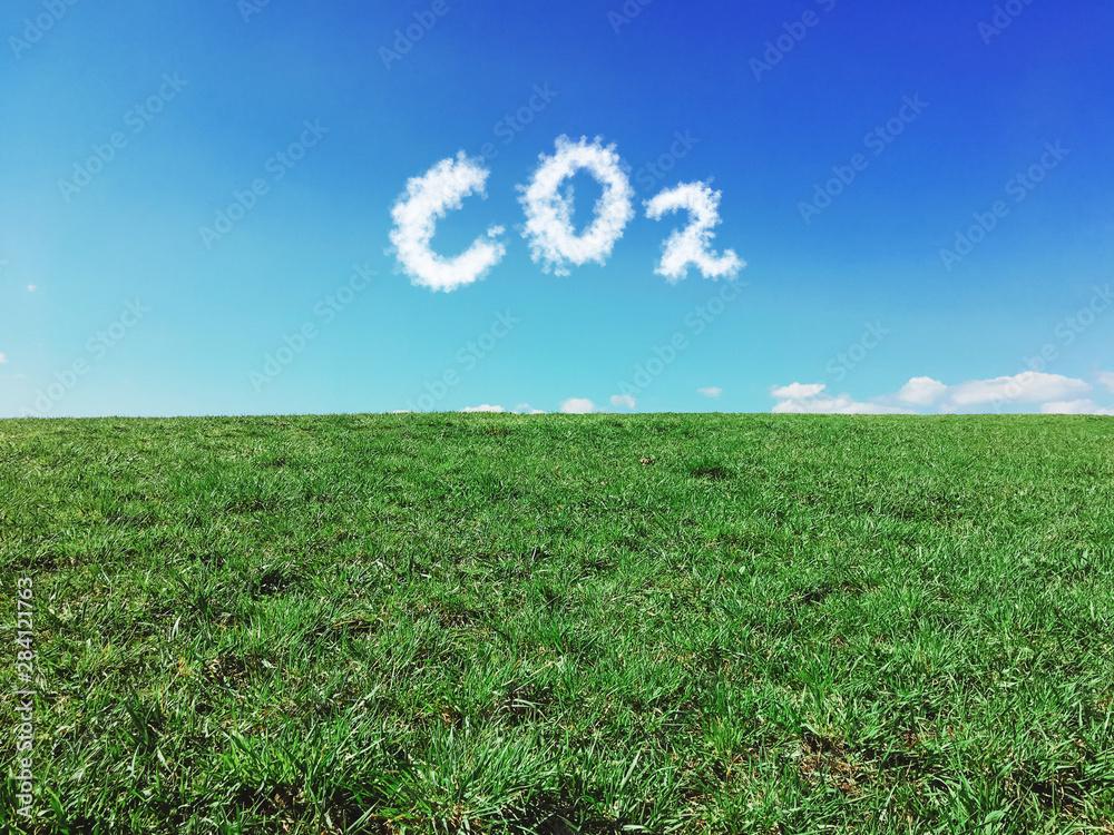 Fototapeta Carbon dioxide emissions control and pollution concept.