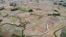Terrace Rice Field Aerial View...