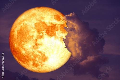 super blood strawberry moon back on silhouette cloud on sunset sky Canvas Print