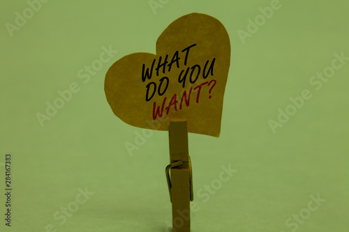 Handwriting text What Do You Want question Canvas Print