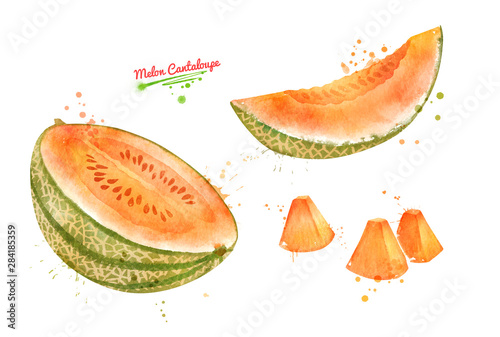 Stampa su Tela Illustration of sliced Melon Cantaloupe