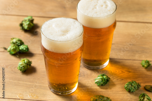 Photo Refreshing Summer IPA Craft Beer