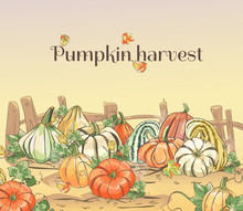 Set Of Hand Drawn Pumpkins. Au...