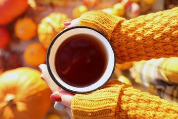 Autumn tea. Mug of tea in female hands on a assortment of pumpkins blurred background. Autumn season
