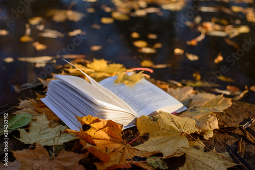 Foto auf Leinwand Wasserfalle open book and autumn