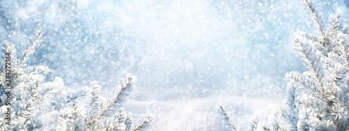 Fotomural  Blue winter christmas nature background frame, wide format