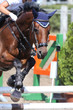 Show jumper horse and rider performing jump at show jumping training. Selective focus
